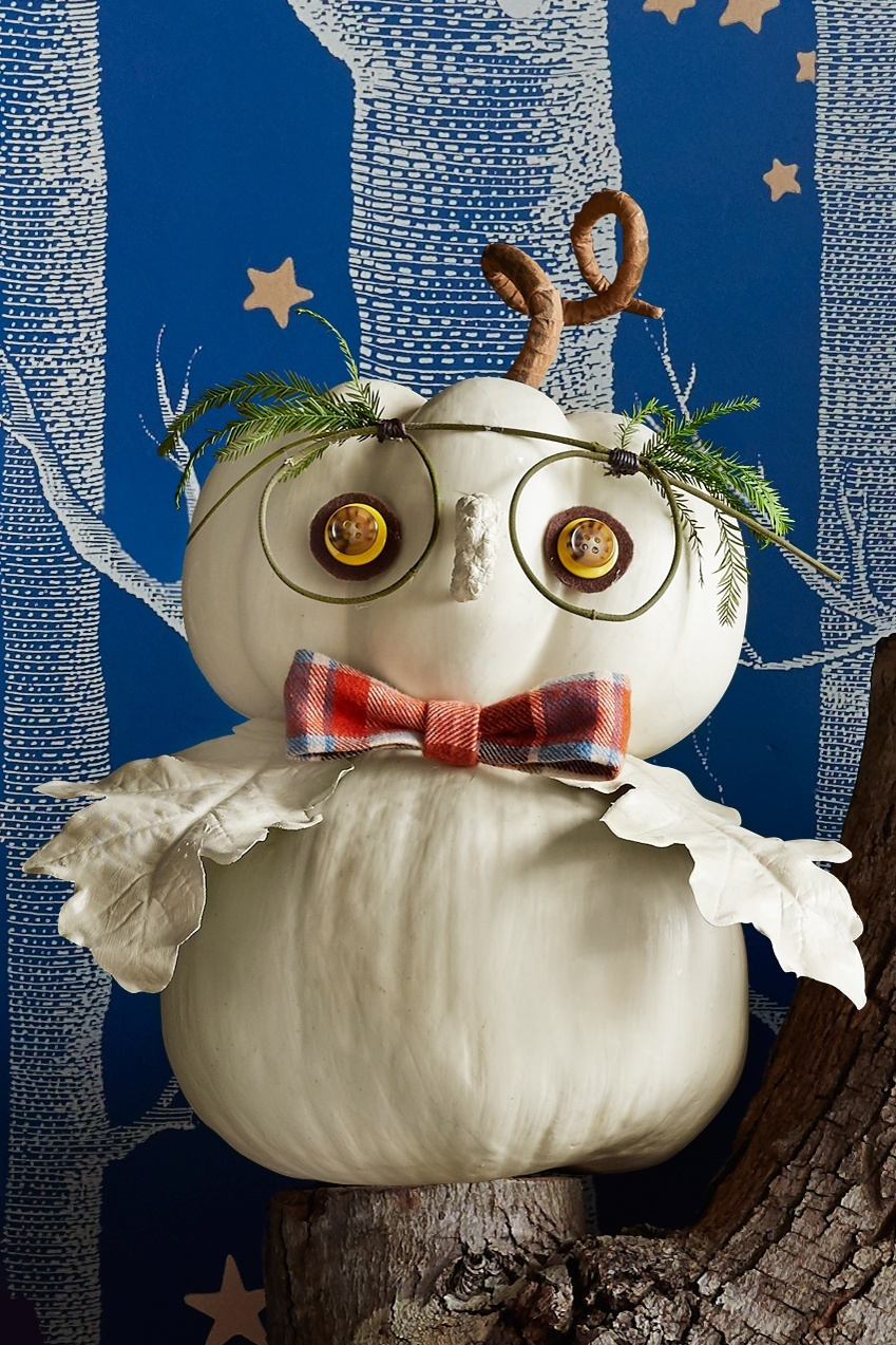 Halloween bagoly